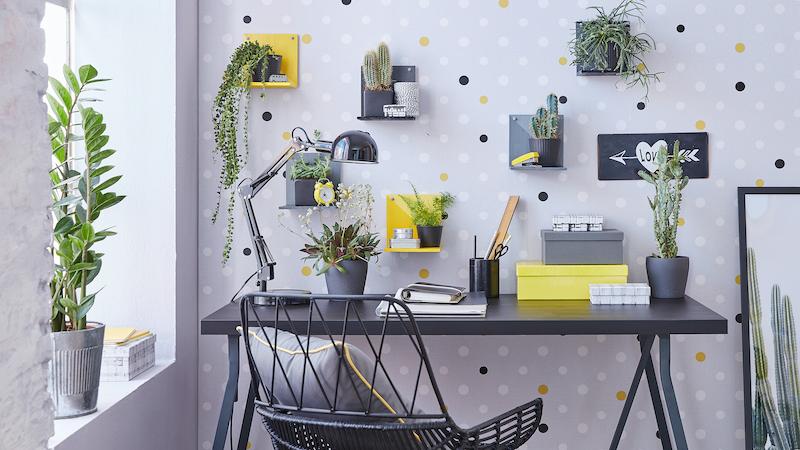 Pflanzen über dem Schreibtisch