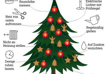 Weihnachtsbaum aufstellen